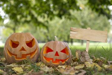 Halloween pumpkin on a glade