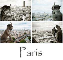 composition gargouilles notre dame de Paris