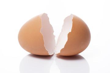 白背景に割れた卵の殻