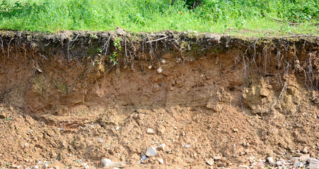 cut of soil