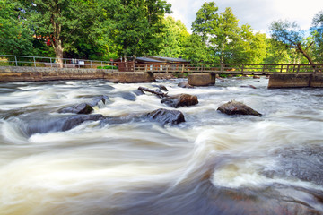 Salmon cascades in southern Sweden