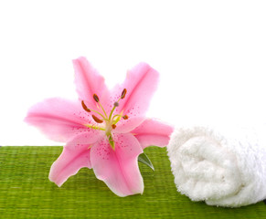 Macro of lily flower with roller towel on green mat