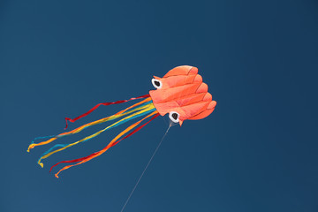 kite sky flying