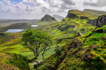 Scenic view of Quiraing mountains in Isle of Skye, Scottish high Wall mural