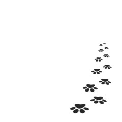 paw print background