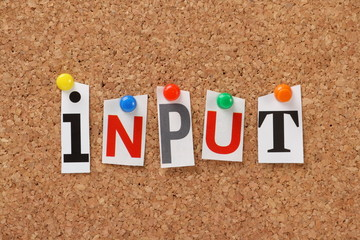 Wall Mural - The word Input on a cork notice board
