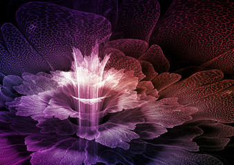 Wall Mural - Abstract fractal flower blossom