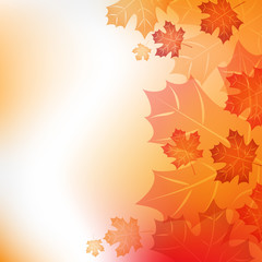 Fototapeta złota jesień obraz