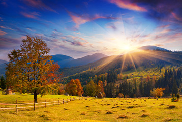 Canvas Prints Honey Colorful autumn sunset in the mountains.