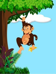 Funny monkey cartoon in the forest