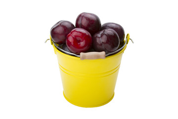 Plums in the yellow bucket isolated on the white background