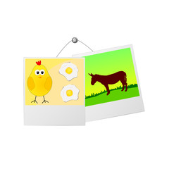 photo frame with cute donkey and the chicken vector illustration