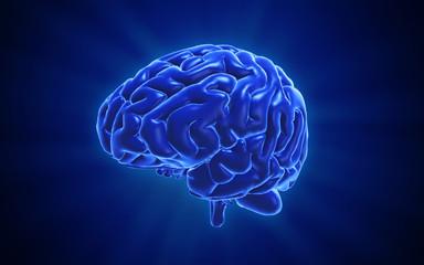 Human Intelligence or psychology concept