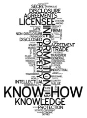 "Word Cloud ""Know How"""