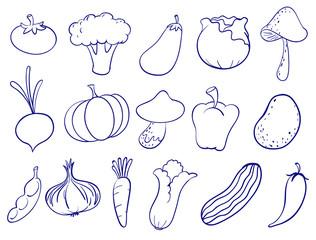Doodle design of fruits