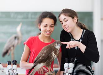 Schüler untersuchen Präparat
