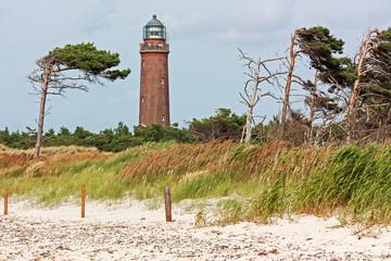 Fototapete - Leuchtturm Darßer Ort mit Windflüchtern an der Ostsee