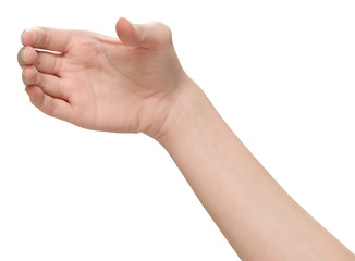 Female hands holding