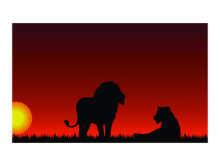 Sunset with lion and lioness