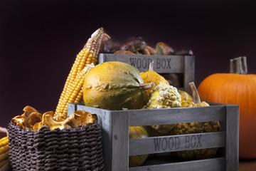 Fresh mushrooms, corn and pumpkin
