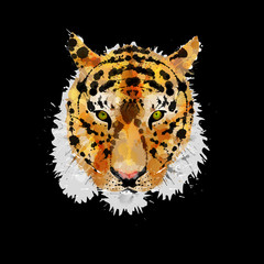 Tiger head made of colorful splashes