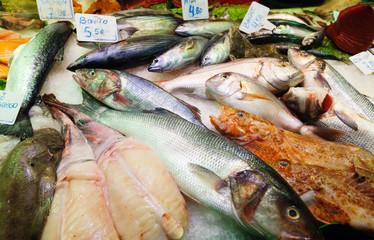 fish on spanish market counter