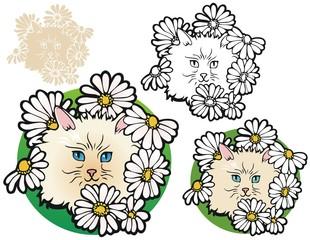 Kitten in the flower bed
