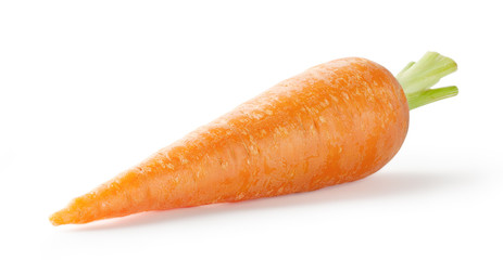 Ripe sweet carrot