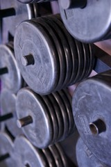 Rack of Free Weight Plates at a Professional Gym