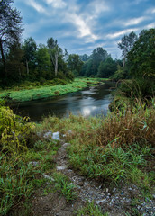 Fototapete - Green Trees with Winding River