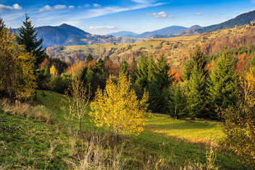 Autumn mountain landscape with mixed forest