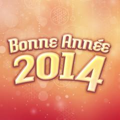 bonne année 2014