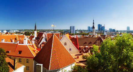 Wall Mural - panoramic view to old Tallinn