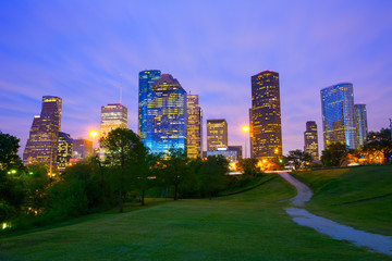 Wall Mural - Houston Texas modern skyline at sunset twilight from park