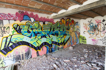 Foto op Canvas Graffiti House destroyed with burned car and very colorful graffiti