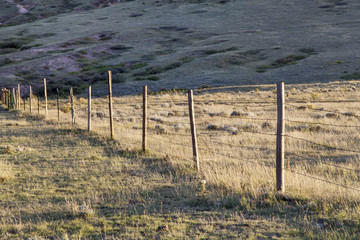 cattle fence on prairie