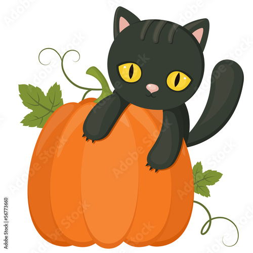 Halloween Symbols Black Cat Over A Pumpkin Isolated On White