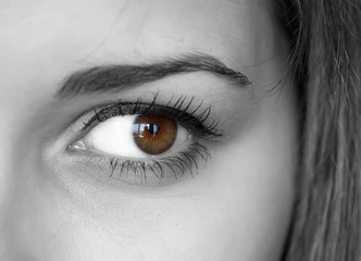 Close up of a brown eyes with reflection.