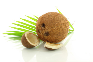 coconut whole and dried