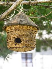 Manger for birds