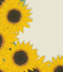 Sketchy sunflowers card