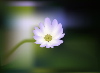 realistic mesh lilac flower on green background