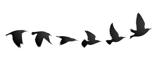 Vogelzug Vektor Silhouette Wall mural