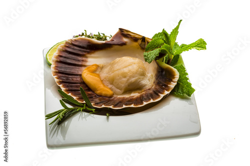 "Scallop with asparagus, lime, mint and rosemary"" Stock photo and ..."