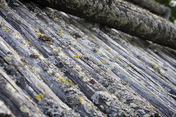 Old wooden log cabin roof (detail)