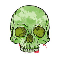 Camouflage Skull On White