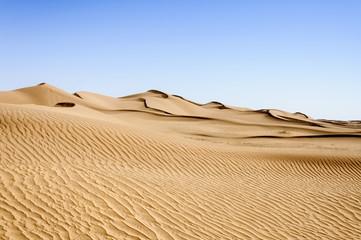 Morocco, Hamada du Draa, sand dunes