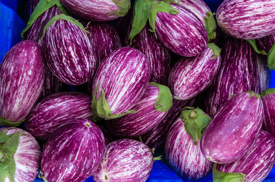 Eggplants with stripes at the market