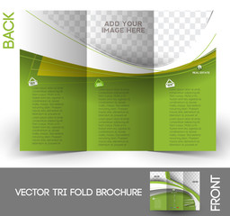 Real Estate Tri-Fold Brochure Design