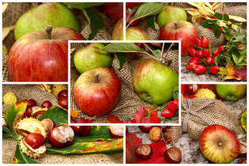 Collage, Fotocollage, Herbstmotiv,